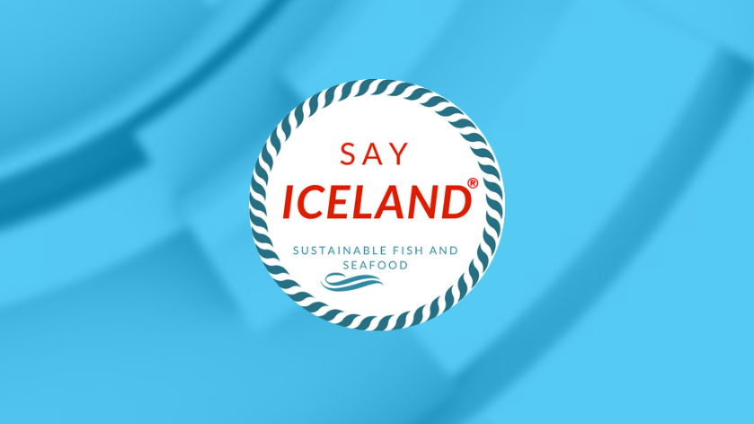 Say-Iceland